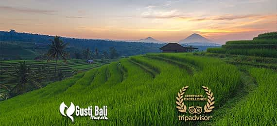 bali-full-day-tour
